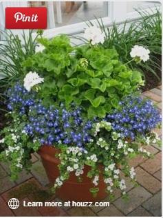 aranjament cu 3 flori